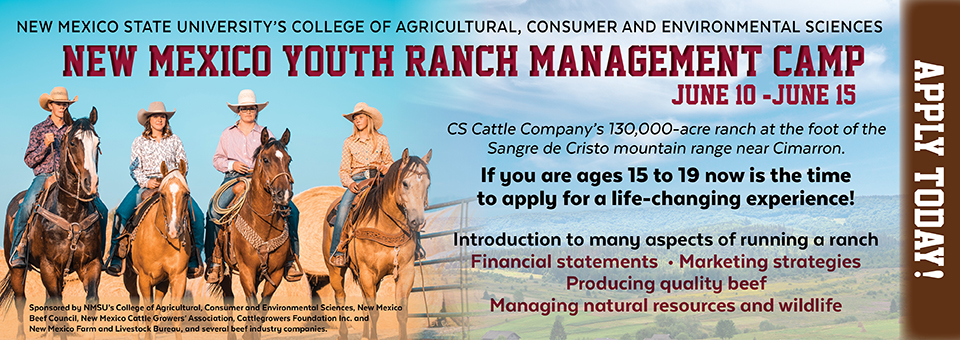 RANCH MANAGEMENT WEB AD